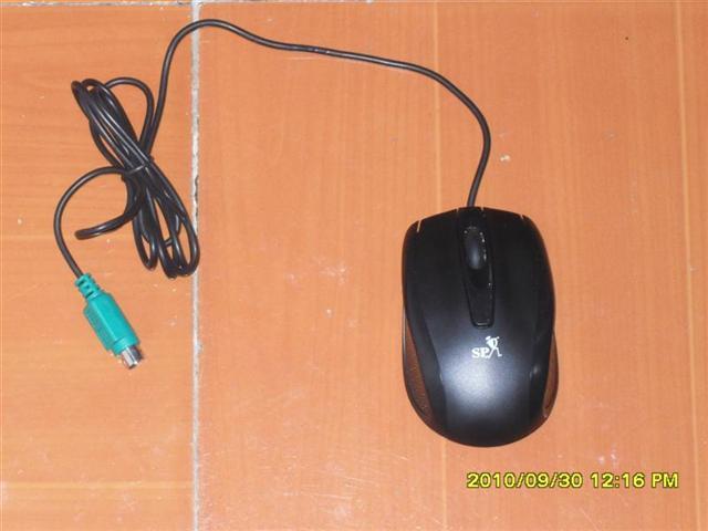 技展单鼠041