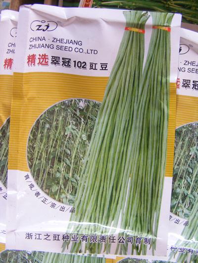 翠冠102豇豆