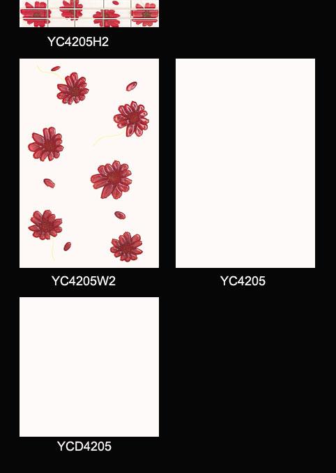 YC4205